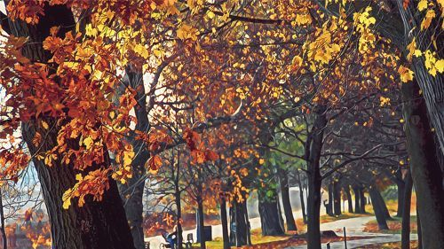 30 Stunning Autumn Wallpaper Collections #autumnwallpaper 30 Stunning Autumn Wallpaper Collections | Naldz Graphics #autumnwallpaper