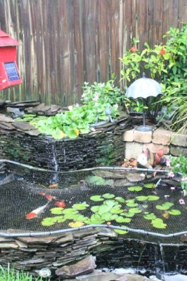 Easy Koi Pond Designs You Can Create To Complete Your home ...