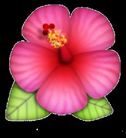 Vinylls Hibiscus Emoji Cartoon Flowers