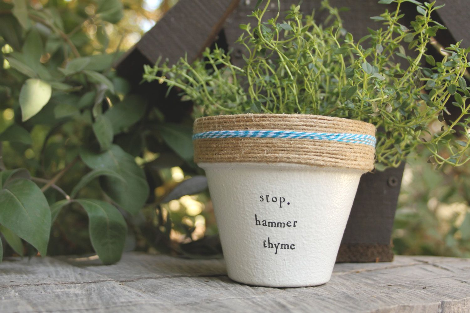 Hammer Thyme By Plantpuns On Etsy With Images Plant Puns