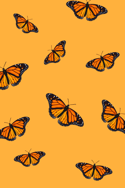 Iphone Wallpapers Butterfly Wallpaper Wallpaperbackgrounds Wallpaperbackgrounds In 2020 Apple Watch Wallpaper Watch Wallpaper Wallpaper Iphone Christmas
