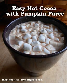 Sneak in some extra vitamin A and fiber with this rich, delicious hot cocoa! No refined sugar needed and a non-dairy option. Plus a {great} tip for storing leftover canned pumpkin!