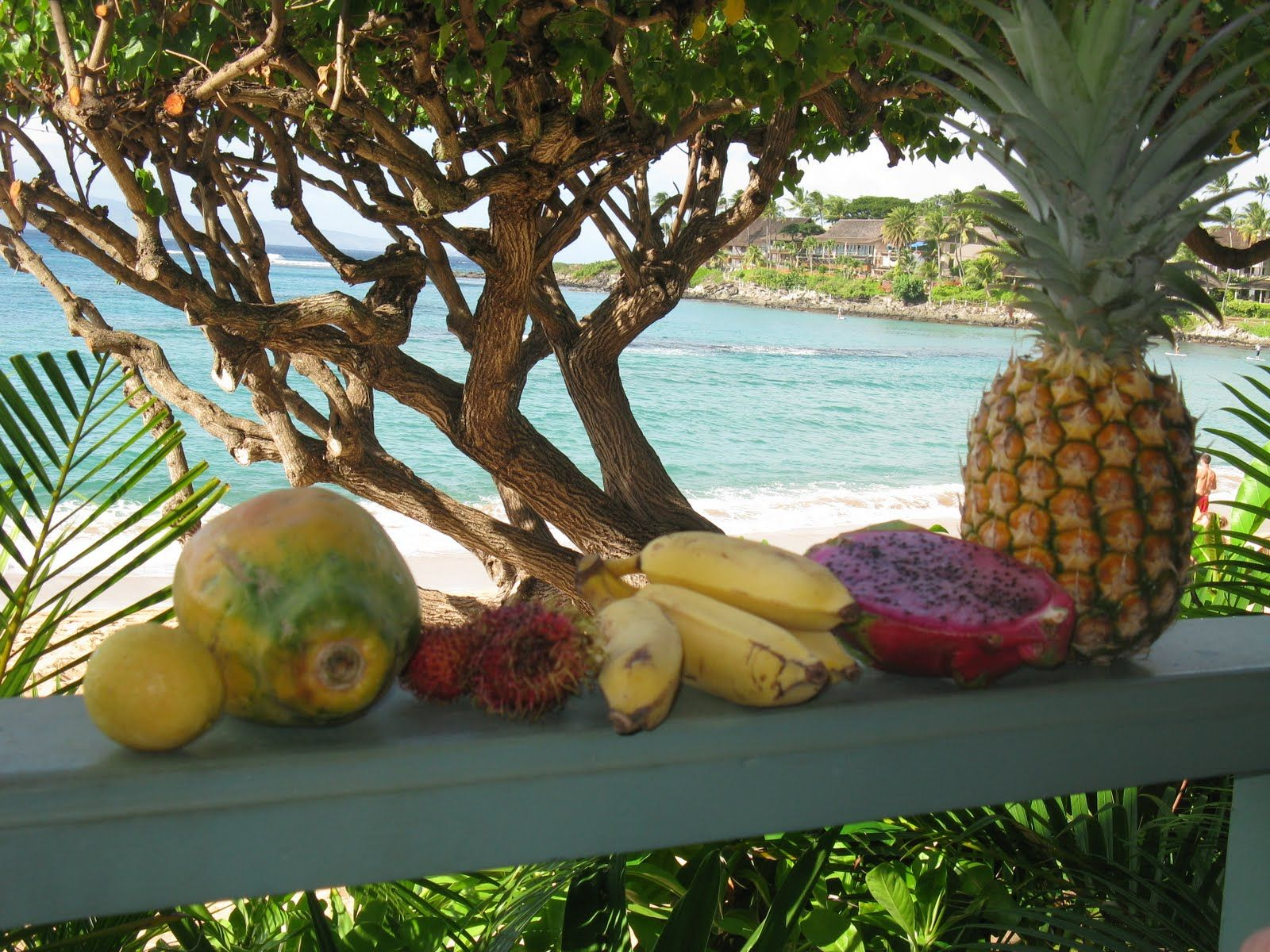 Tropical Fruit Photography
