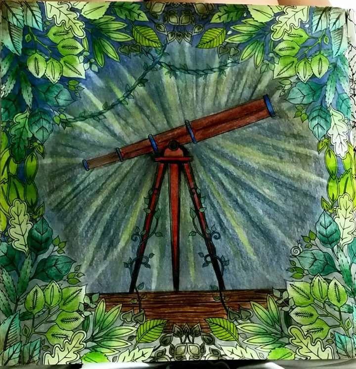 Johanna Basford Coloring Book Colouring Telescope