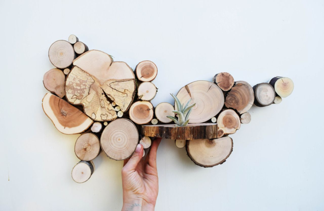 Reclaimed wood tree slice wall sculptures by רעיונות