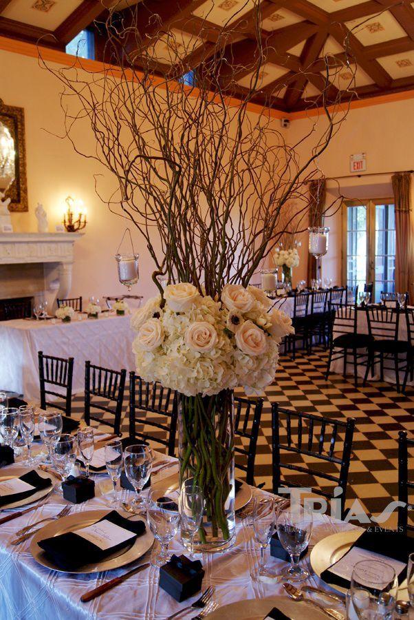 High Centerpiece Rental Cylinder White Hydrangeas White