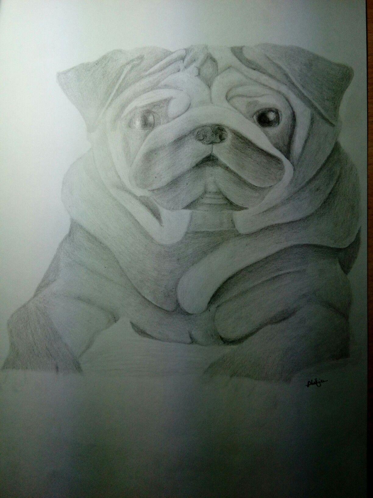 Dibujo perro #Aprendiendo #Draw #Dog
