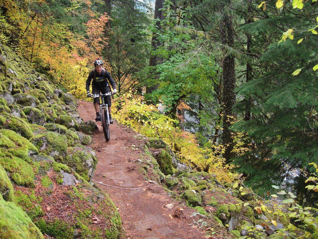 Mckenzie River Trail Mountain Biking