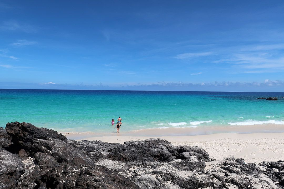 Love this beautiful white sand beach on the Big Island of Hawaii. Click through to read all about it! #hawaii #beaches #hawaiibigisland #bigisland #bigislandbeaches #hawaiibeaches #whitesand #summer #travel #beachtravel