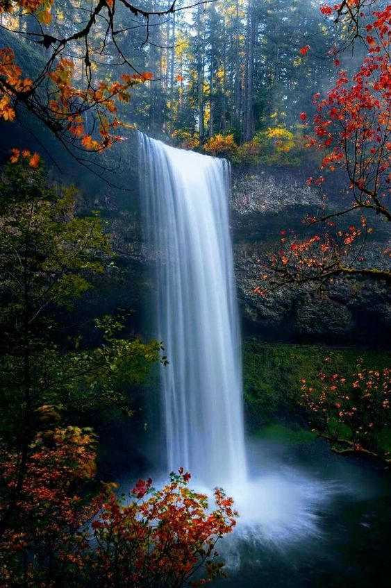 59 Amazing Mysterious Waterfall Landscapes Waterfall Landscape Waterfall Photography Landscape Photography Nature