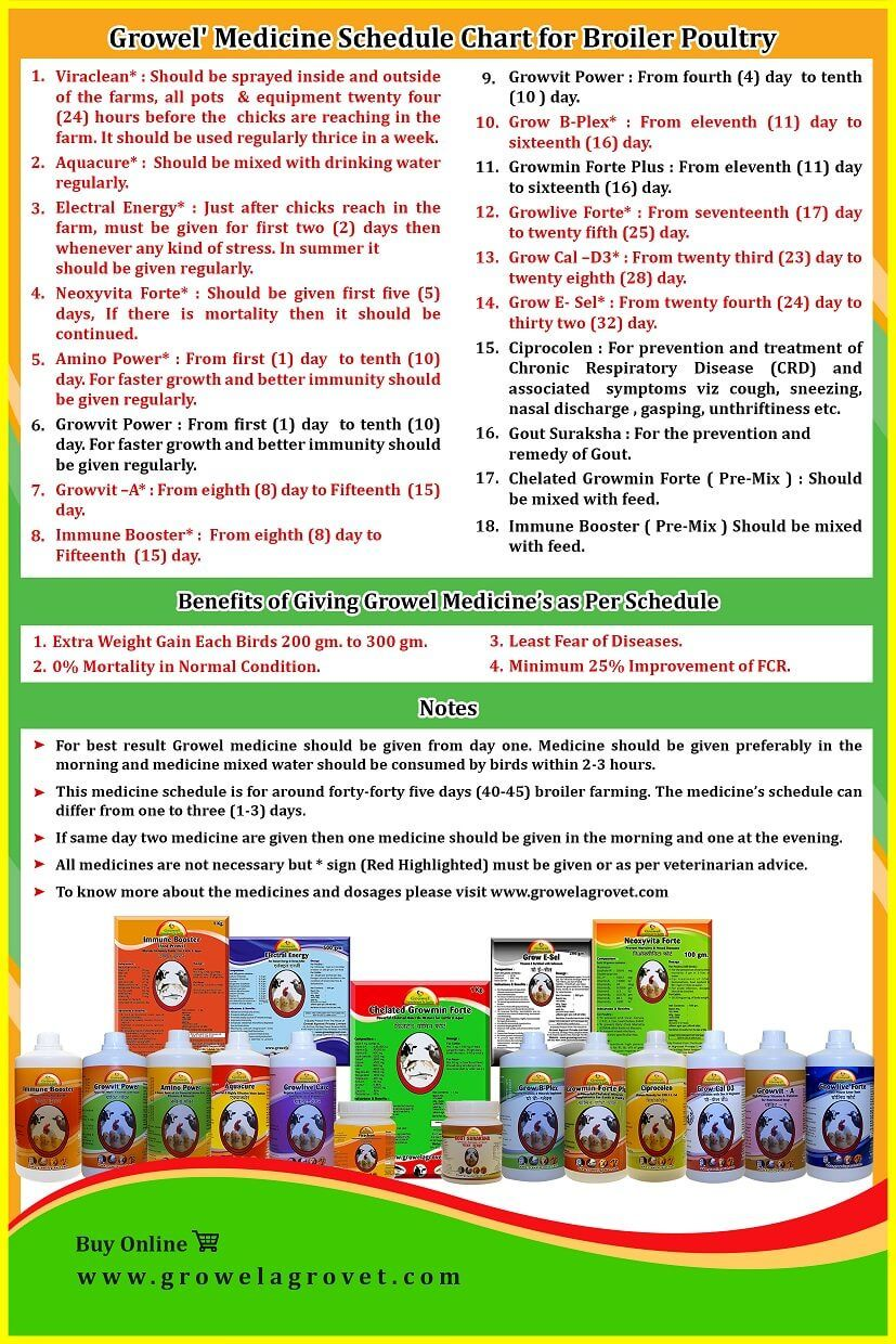 Broiler Poultry Medicine Schedule Chart Poultry Medicine