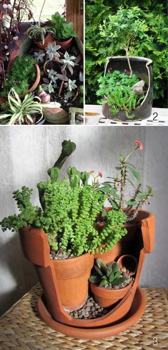 Avec des pots cass s jardin pinterest pots d co for Plante decorative exterieure