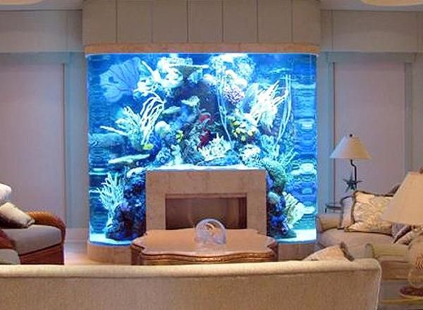 Cool Fish Tank Ideas   ... fish tank built into fireplace wall, gorgeous
