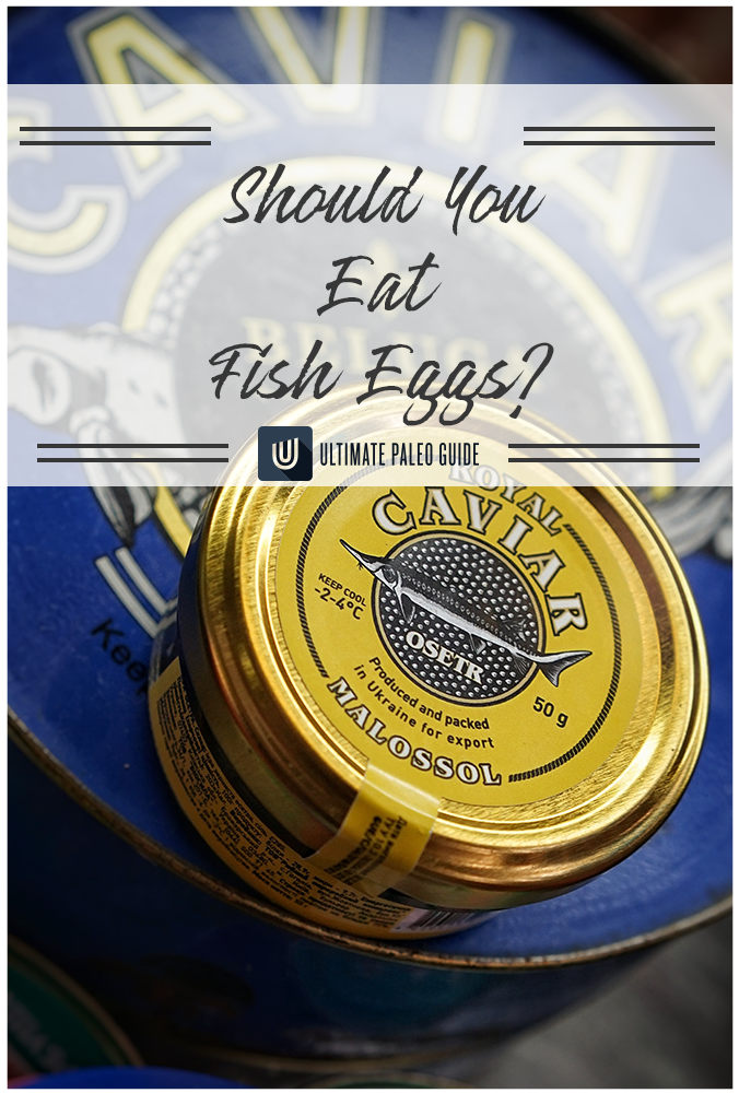 should you eat fish eggs in 2020  ultimate paleo guide