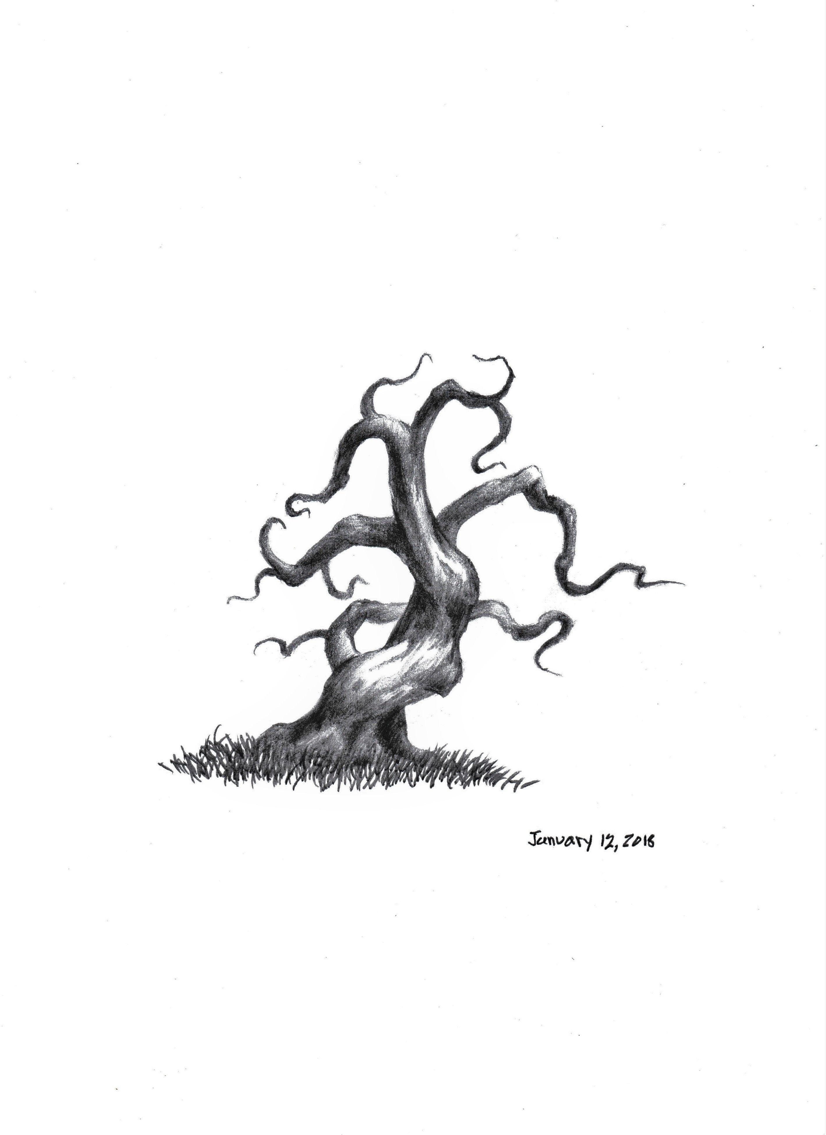 cold rain tree