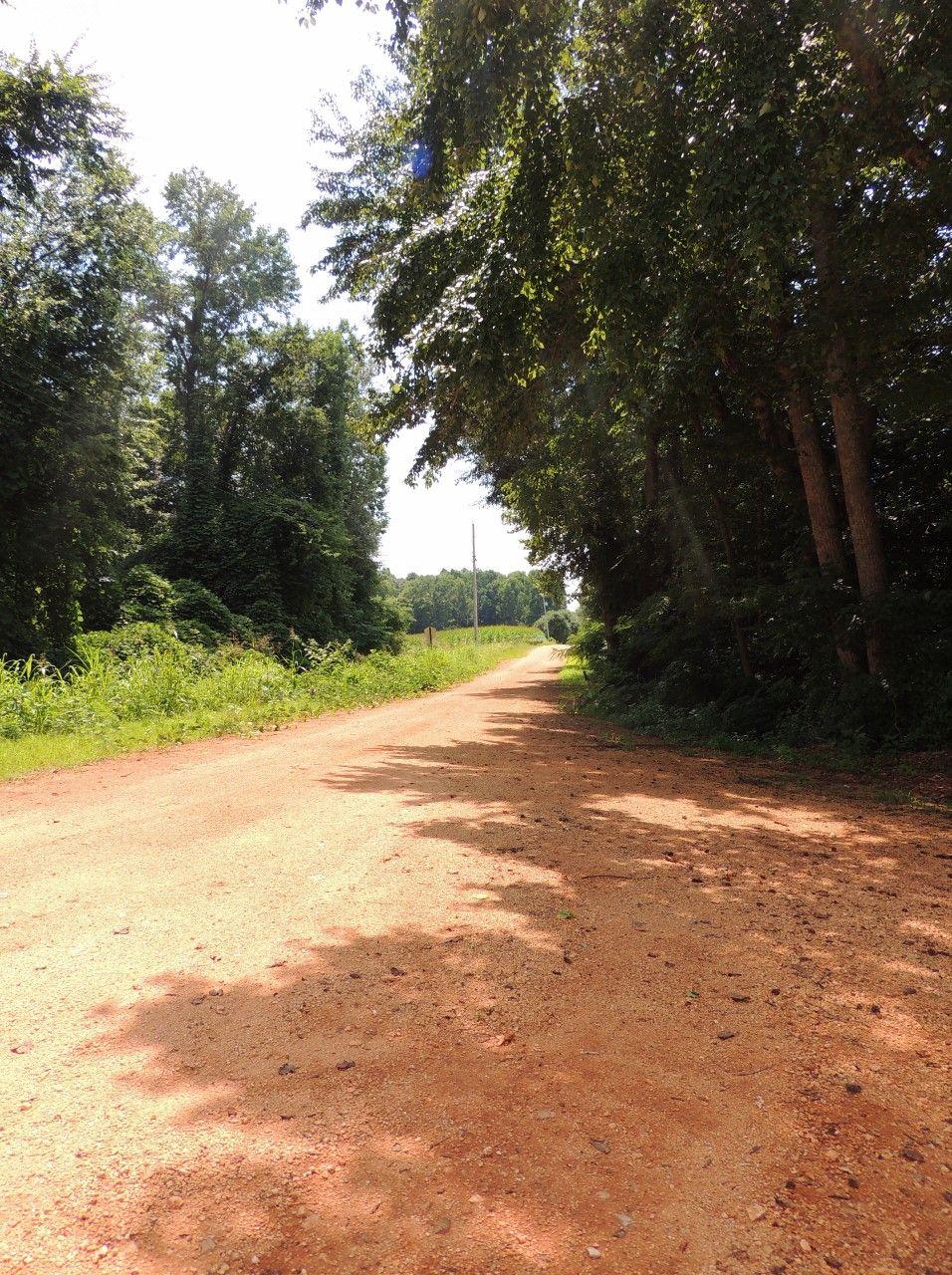 384 Alabama Countryside Countryside Country Roads