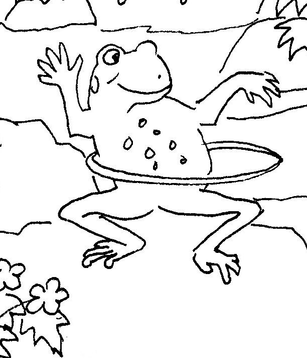 Hula Hoop Frog Coloring Books Fun Critter