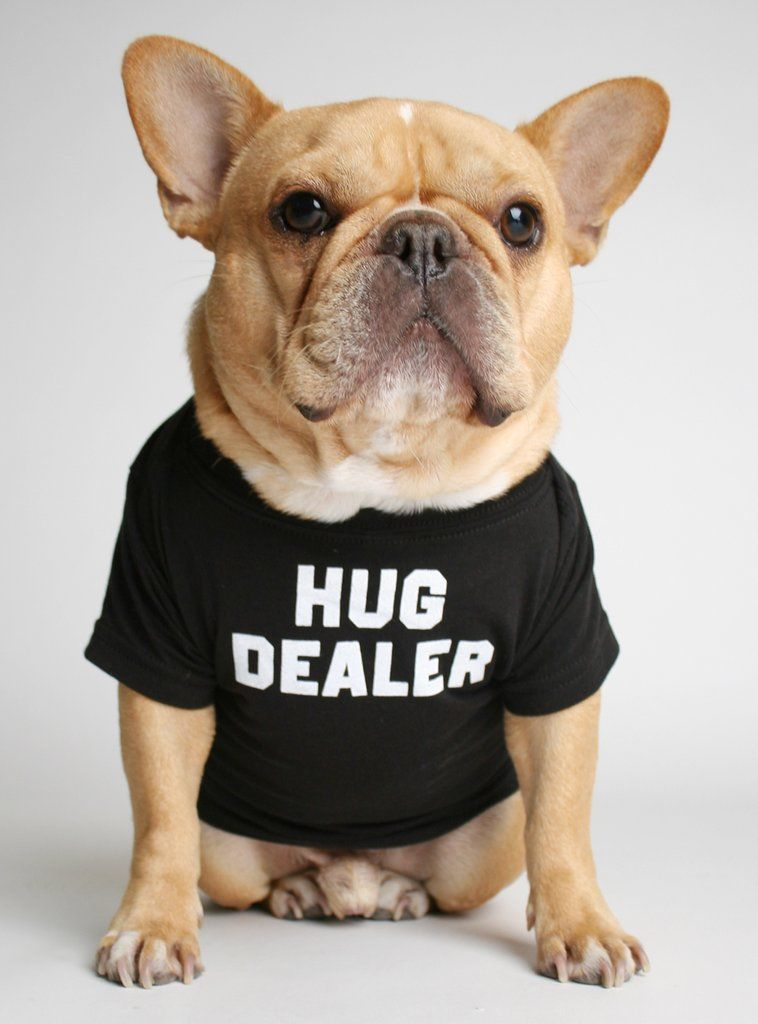 Hug Dealer Dog Tee Dog Shirt Bulldog Puppies French Bulldog