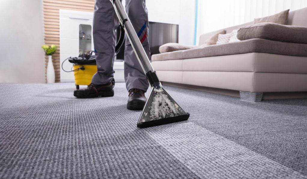Pin By Ankit Mittal On Lifestyle How To Clean Carpet Best Carpet Commercial Carpet Cleaning