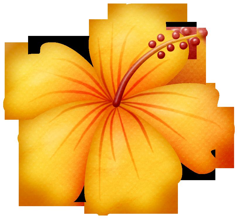 Flores Animadas Infantiles Con Colores Imagui Polleras Y
