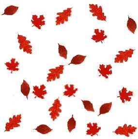 clip art autumn nature borders photo of autumn clipart or rh pinterest co uk  fall leaves background clipart