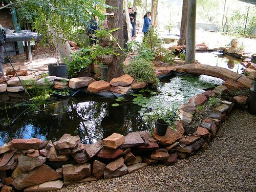 One more aquaponics page using recycled materials to for Garden pool aquaponics