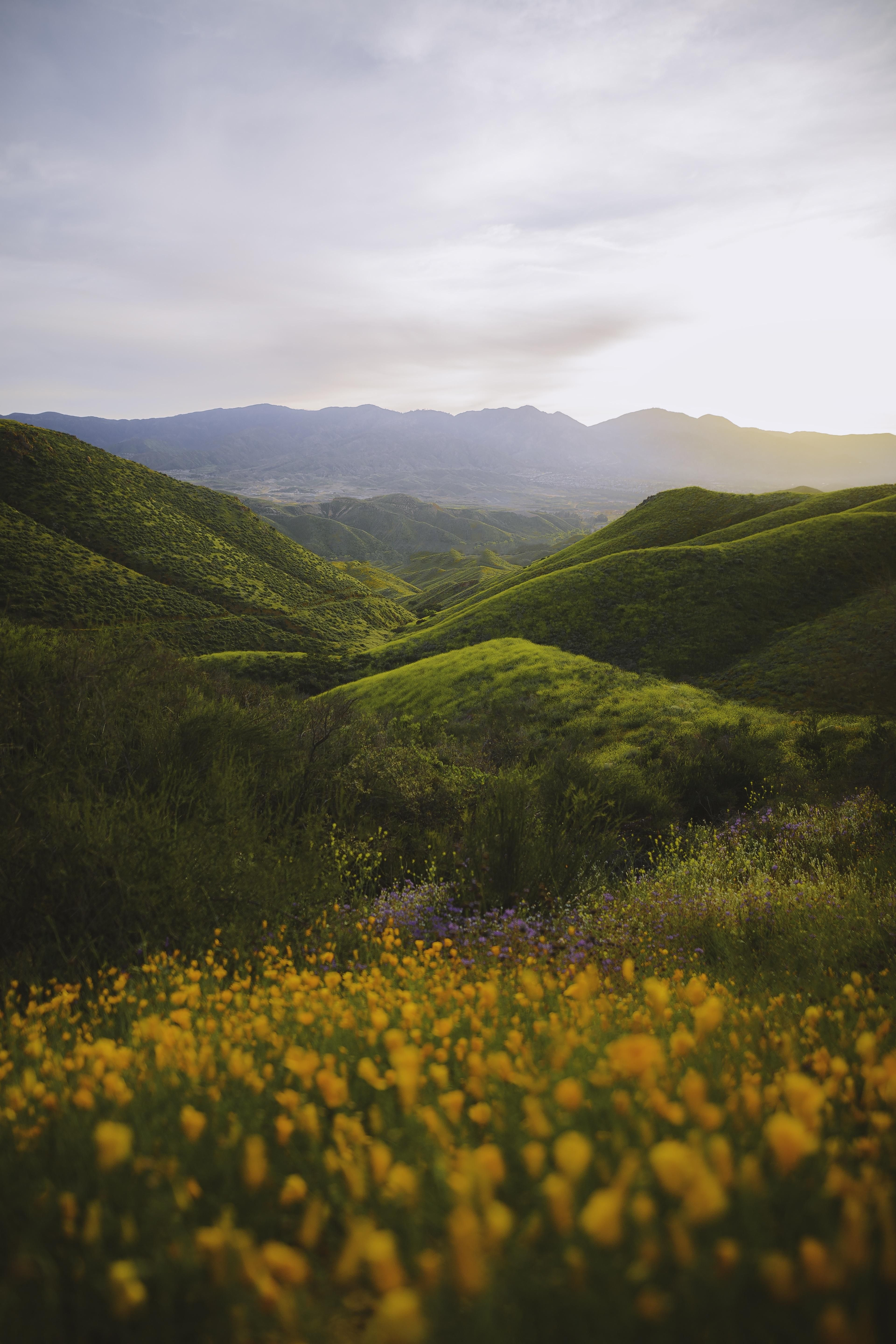 Super Bloom In California 3840x5760 Beautifulnature Naturephotography Photography Earthporn Tr Landscape Photography Nature Photography Nature Aesthetic