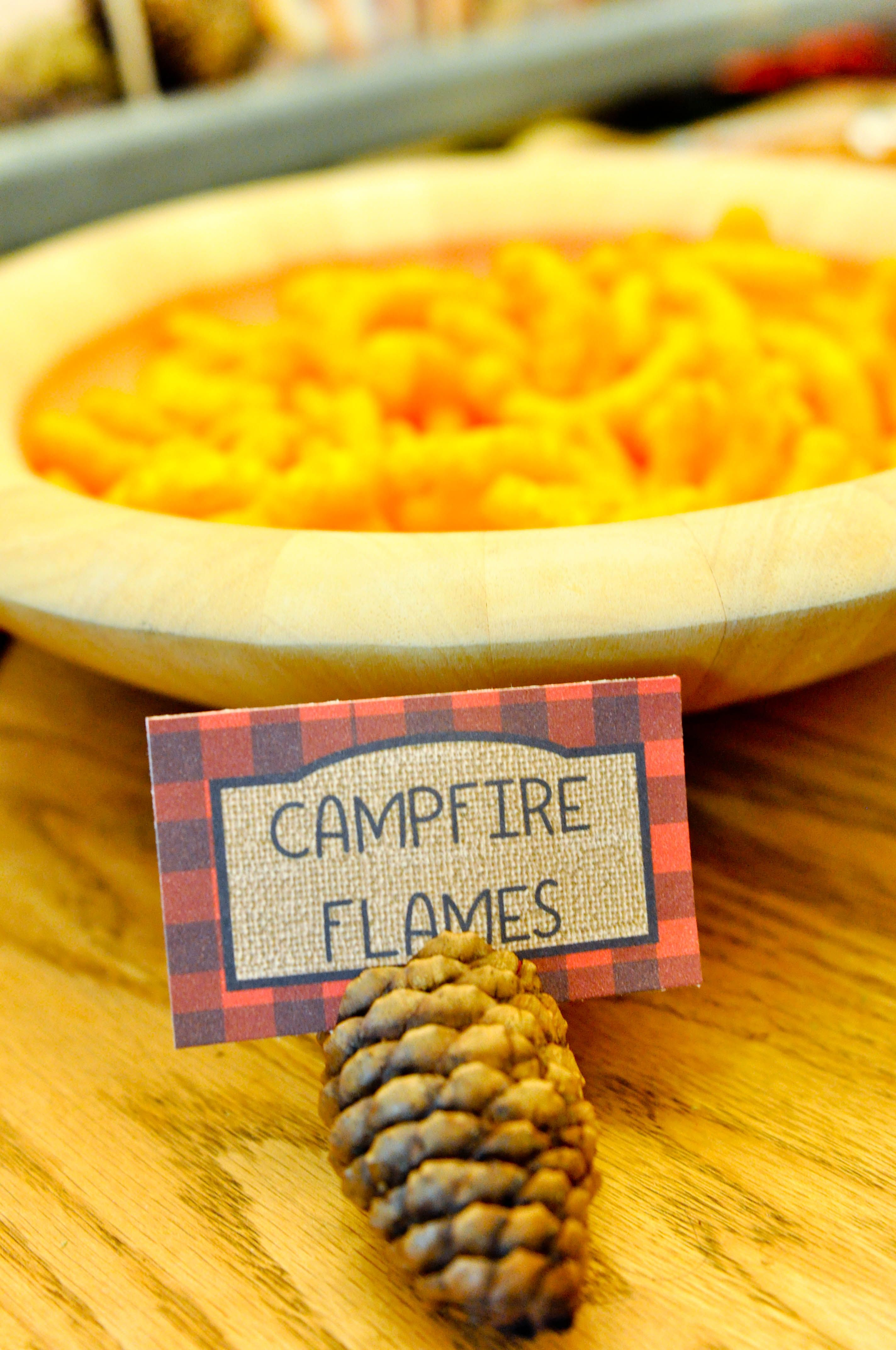 backyard camping party food camping party smores party kids