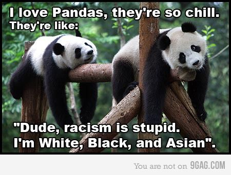 Racism is stupid!