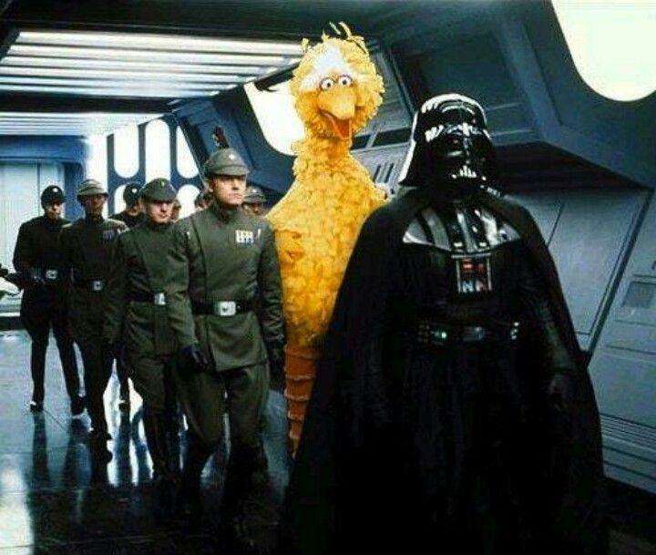 fa3818f7 Something doesn't quite belong here... | LOL | Star wars, Big bird ...