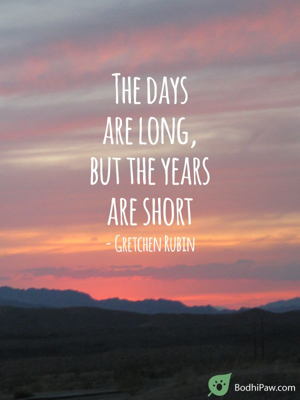 The Days Are Long, But The Years Are Short - Parenting Quote ...