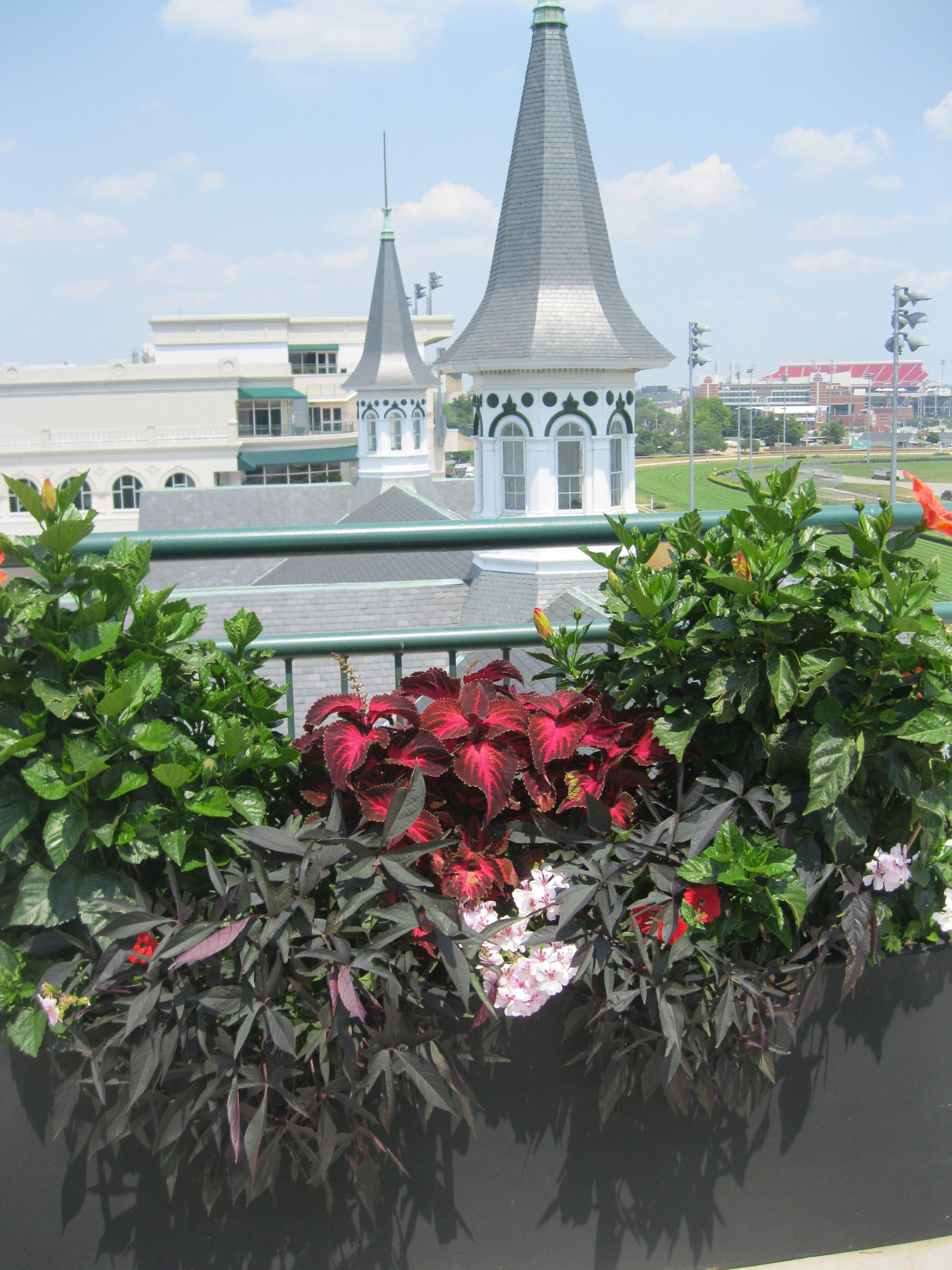 Churchill downs louisville ky with images kentucky