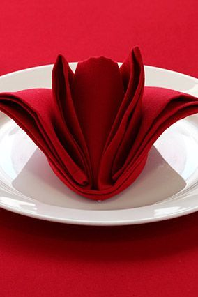 6 Incredible Napkin Folding Ideas Kitchen Crafts