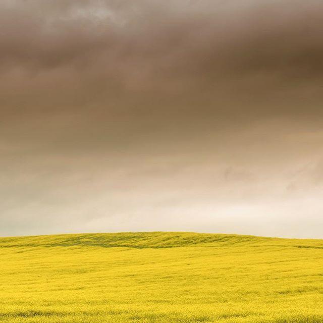 clouds of may #nbc #nuribilgeceylantribute #altinkare #cokgezenlerkulubu #fotozamani #aniyakala #ourplanetdaily #chasingemotions #ig_dynamic #mainvision #ig_worldclub #ig_serenity #ig_photostudio #foto_naturel #ig_captures #igworldclub #lovesbestpic #gorulmesigerekenyerler #click_n_share #igerworldwide #igersmood