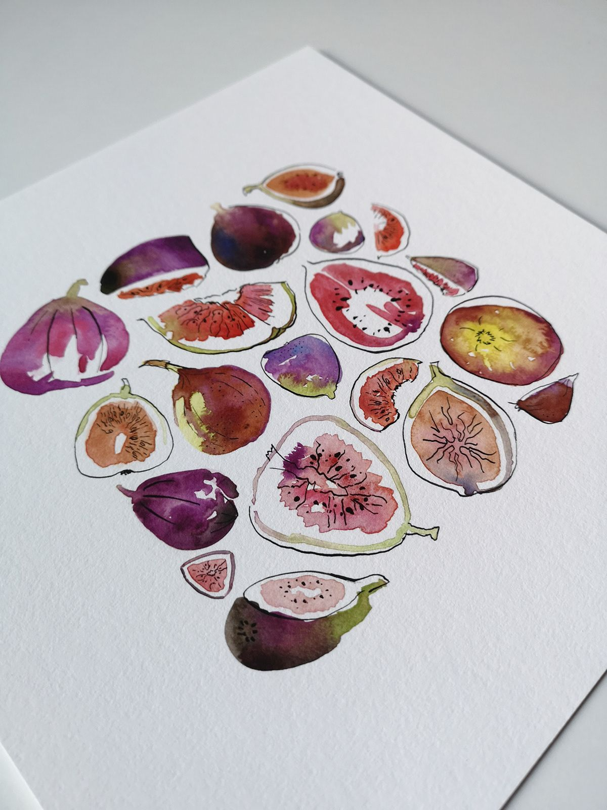 Photo of Fig Watercolour Giclee Print