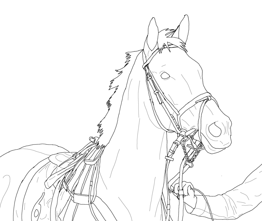 Racehorse Lineart By MakiTokitodeviantart On DeviantArt Horse Coloring PagesQuilting