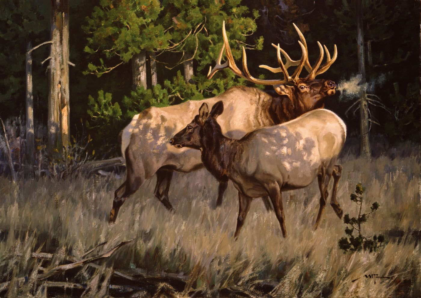 Wildlife Art, Art, Cowboy Art