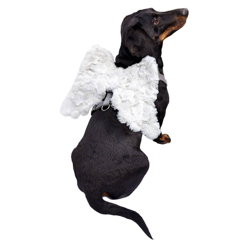 Halloween Dog Harness With Angel Wings White Small In 2020