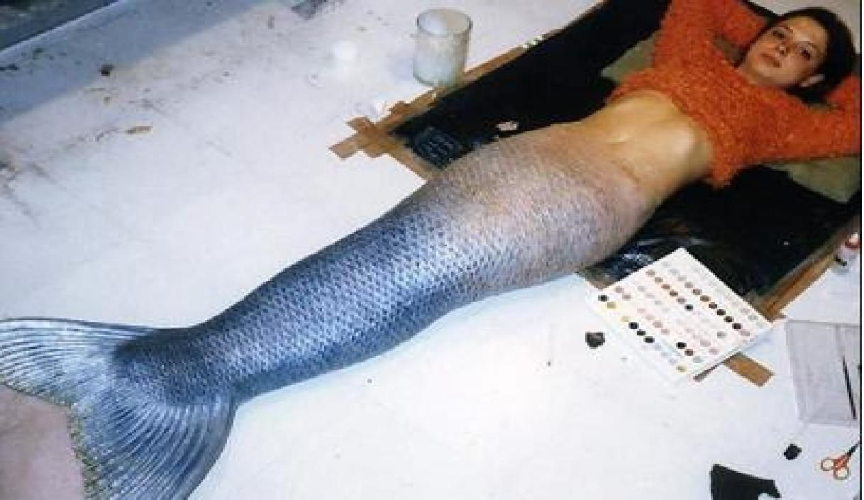 Real Mermaid Tail realistic+mermaid+tail...