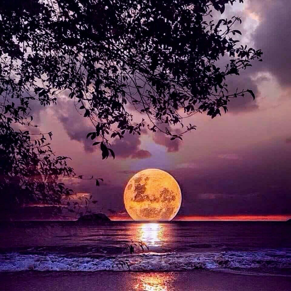 Full moon over water Mother nature at its finest