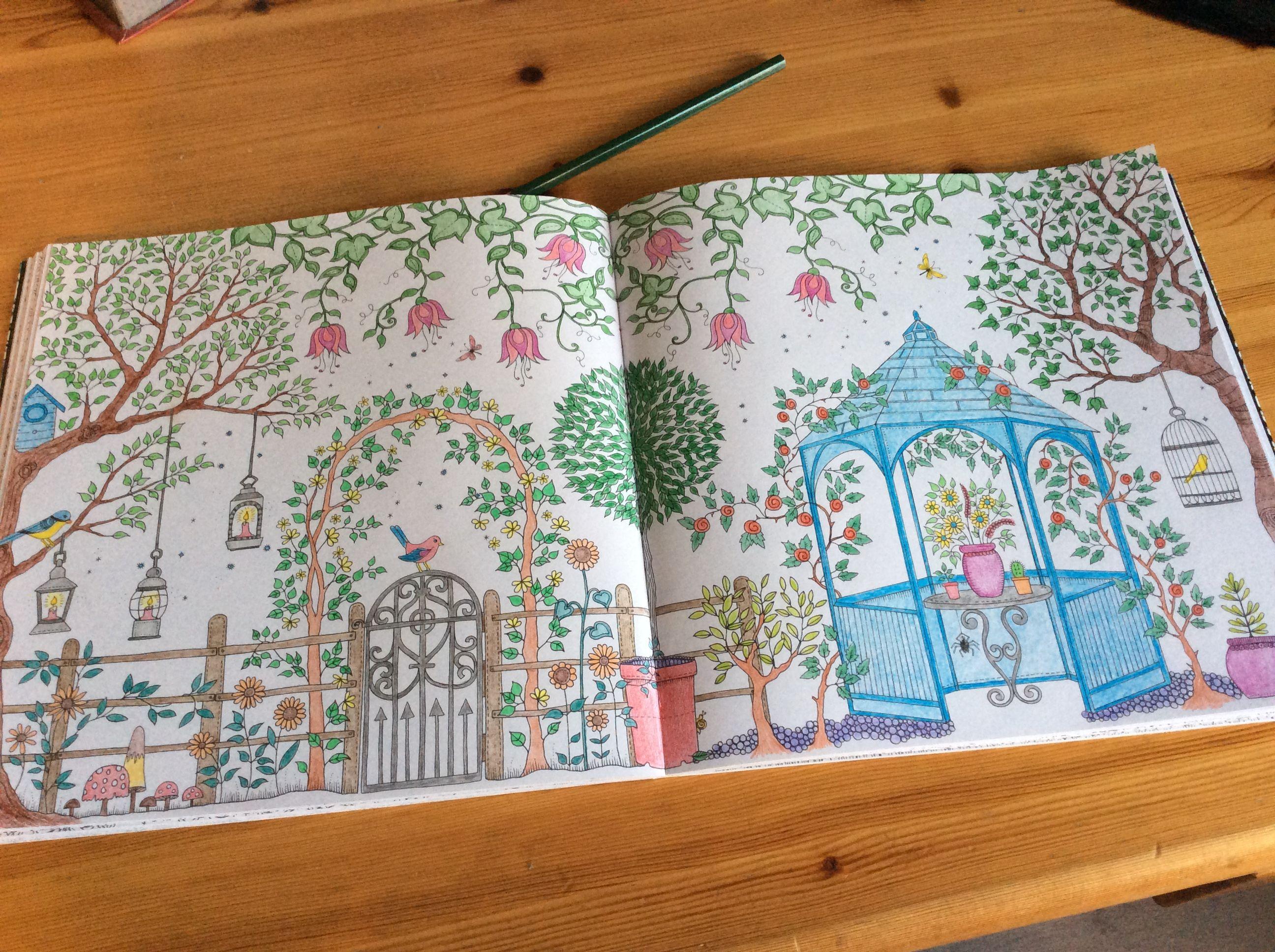 Épinglé par Sophie sur Coloriage jardin secret | Coloriage jardin secret, Jardins secrets, Coloriage