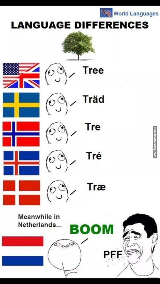 Language Differences Tree Met Afbeeldingen Grappige Grappen