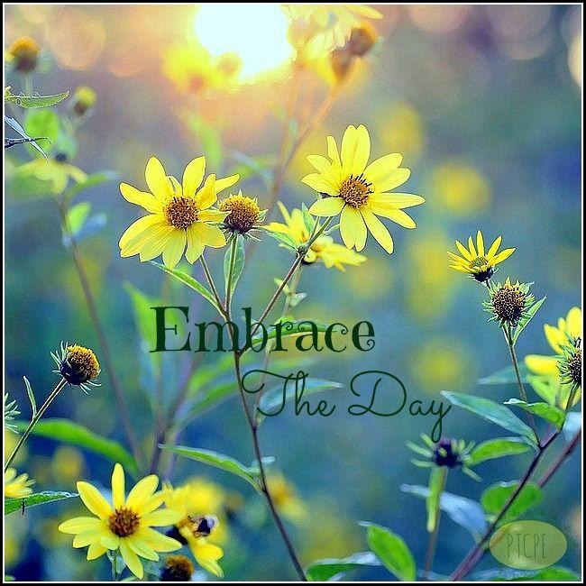 Embrace it, enjoy it! http://Abundance4Me.com