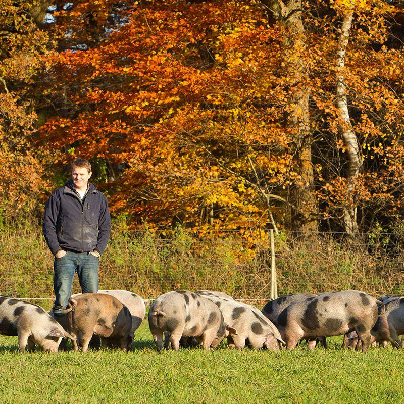 Auf Dem Hof Bodenkamp Sorgen Landwirte Jens Van Bebber Katja Bodenkamp Mit Viel Engagement Und Hingabe Fur Das Schweinewohl Der Ebern Boden Bunte Bentheimer