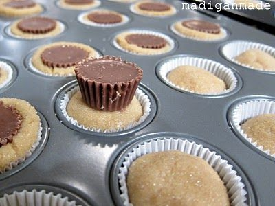 Peanut butter cup sugar cookie cupcakes