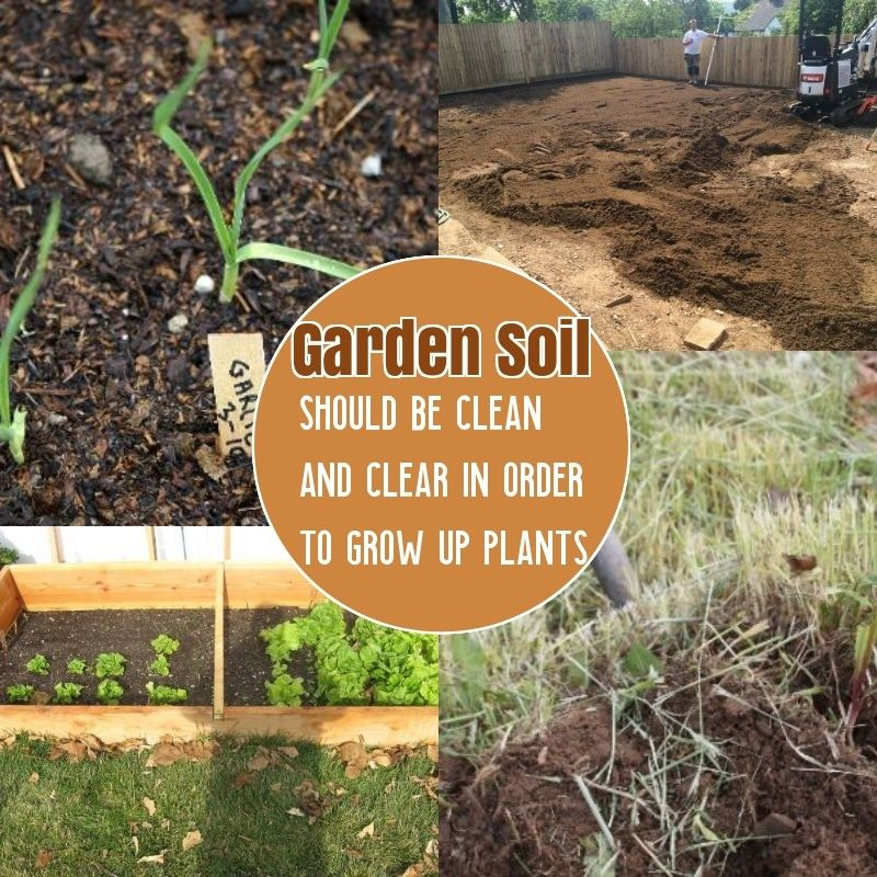 b0070cf38222bb3cde78829f3184730d - How To Prepare Soil For Next Year Gardening