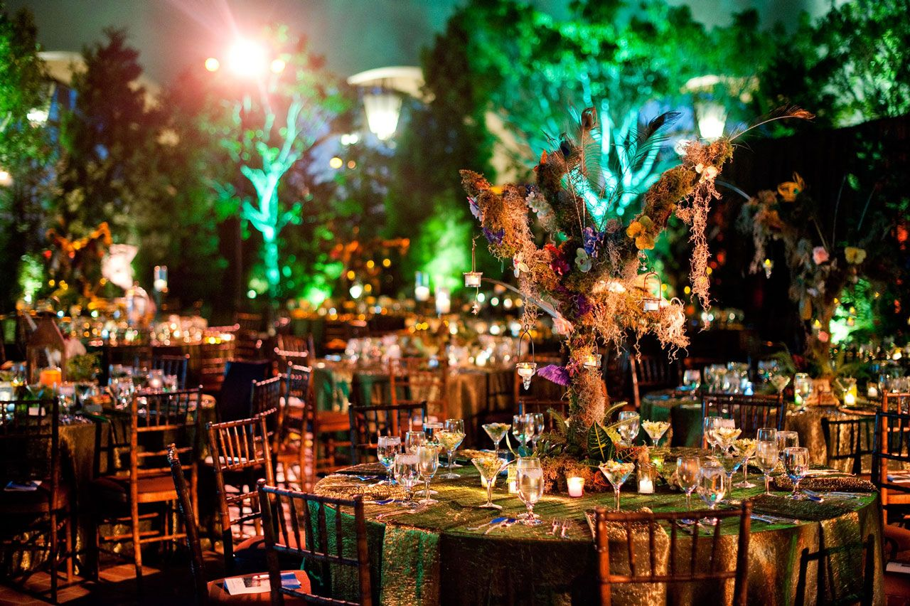 Enchanted Fairy Forest with Kenny Loggins by Merryl Brown Events ...