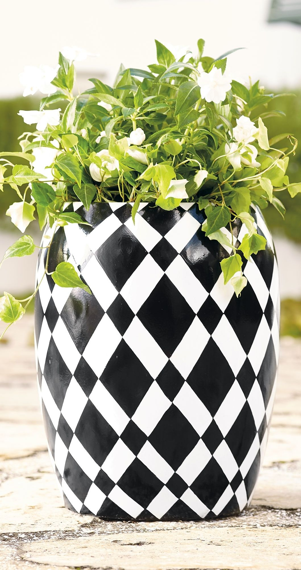 Diamond Black And White Planter Grandin Road White Planters Planters Black Garden