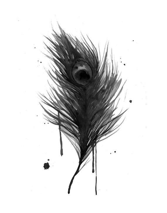 Black Peacock Feather Watercolor Black Feather Peacock By Jessica Durrant Feather Tattoo Colour Feather Illustration Peacock Painting