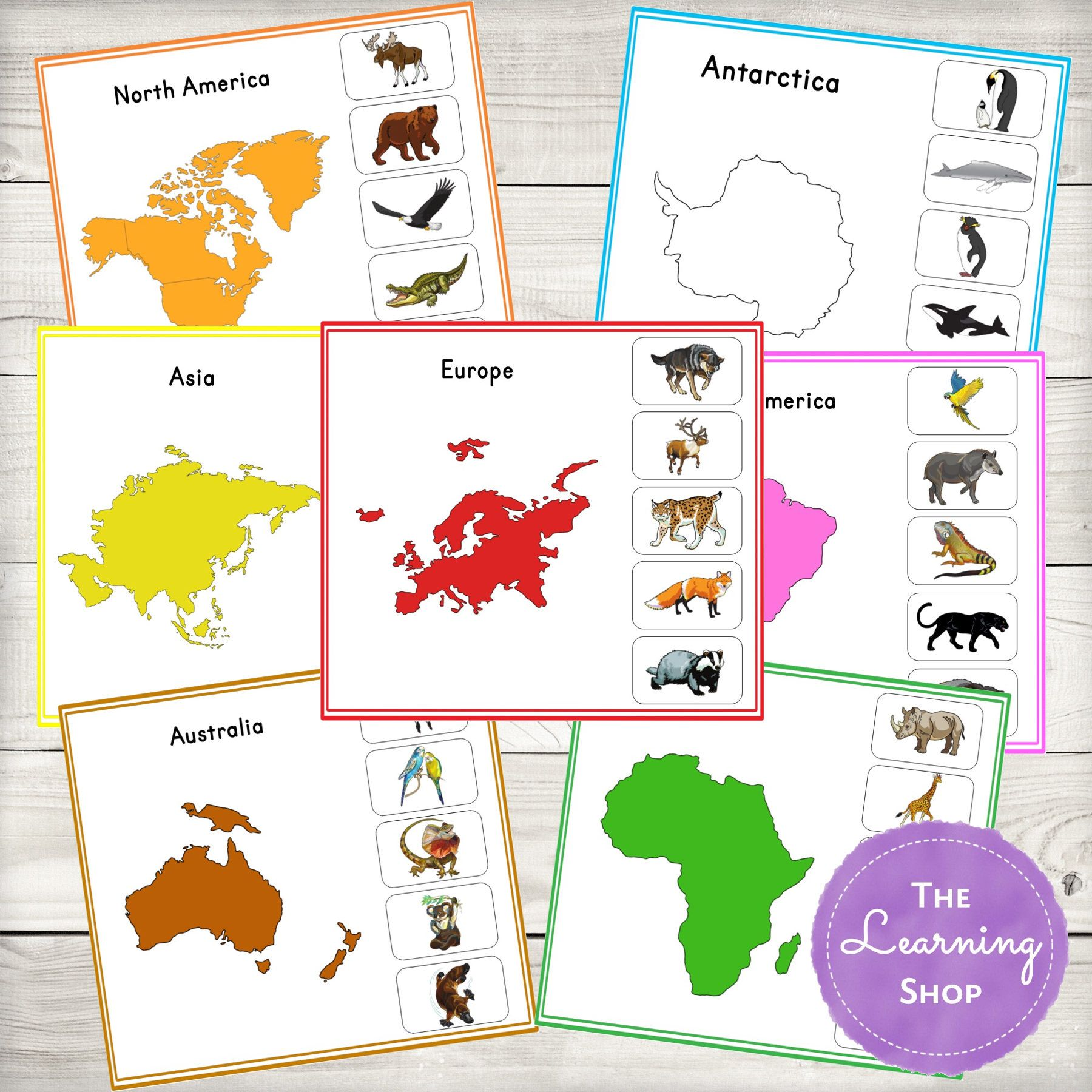 Animal Continents Activity Sheets By Thelearningshop On